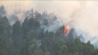 Incendio sin control en la isla de Gran Canaria: 1.500 hectáreas quemadas y 4.000 evacuados