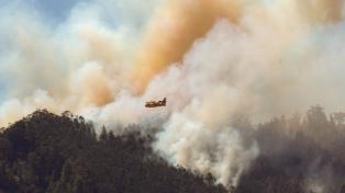 Aseguran que el incendio en Gran Canaria podría estar controlado en breve