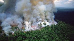 Las FFAA empiezan a trabajar para combatir el fuego en la Amazonia