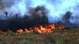 Murió un bombero voluntario que combatía el fuego en la Chiquitania boliviana