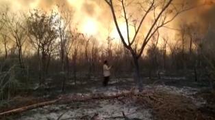 Aseguran que ya hay más de dos millones de hectáreas afectadas por los incendios