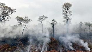 Suspenden la quema de campos ante los incendios en la Amazonia