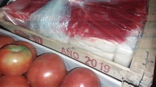 Decomisan más de 400 kilos de cocaína ocultos en un cargamento de tomates
