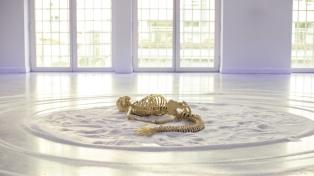 El esqueleto de una sirena y una reflexión sobre los cuerpos y sus límites