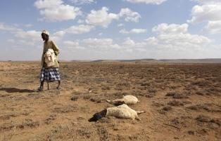 África, la más afectada por la crisis, también clama por el planeta