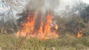 Más de 300.000 hectáreas devastadas por los incendios