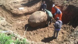 Rescataron los restos de un gliptodonte en Ezeiza