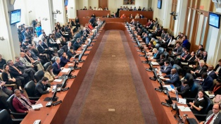 """26 países piden en la OEA elecciones """"urgentes"""""""