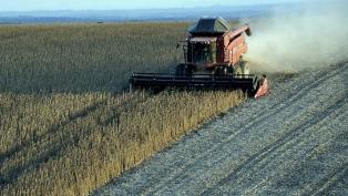 Las compras anticipadas récord de granos ya representan un cuarto de la cosecha 2019/20