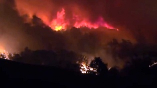 Tres muertos y cinco desaparecidos por los incendios forestales