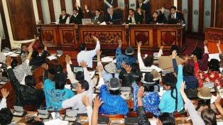 El MAS de Evo Morales convoca a sesión parlamentaria para nuevos comicios