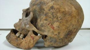 Restituirán el esqueleto de un mapuche asesinado en el siglo XIX por robar un poncho