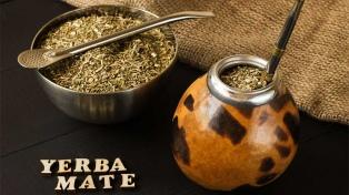 Aumentó 12 millones de kilos el consumo de yerba mate entre enero y noviembre