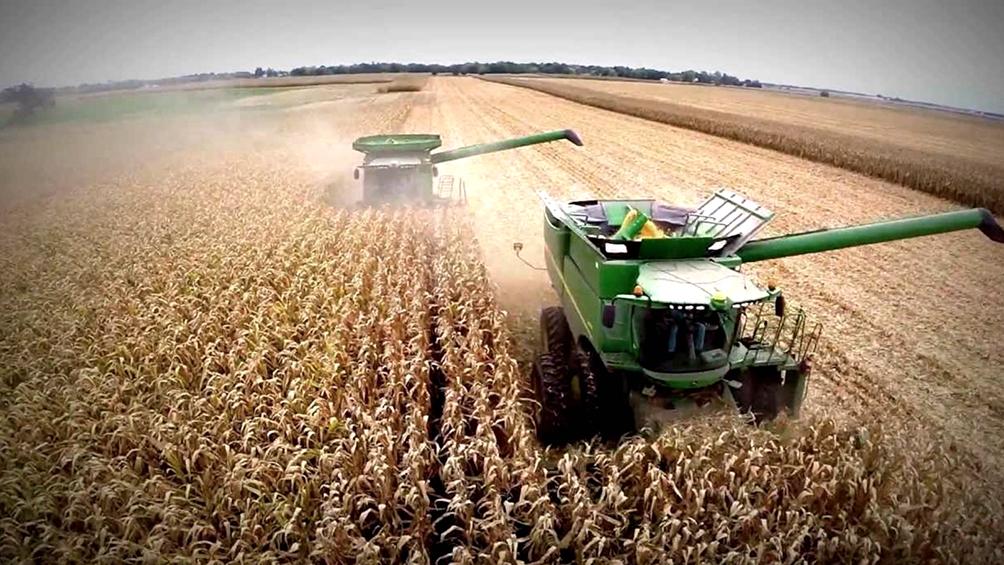El Gobierno subió las retenciones a la soja y redujo las de las economías regionales