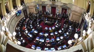 """La oposición """"va a acompañar"""" en el Senado el proyecto de deuda, adelantó Naidenoff"""