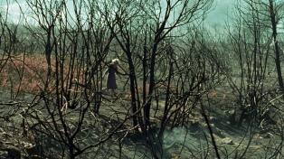 Trece filmes españoles inéditos aterrizan en marzo en el país