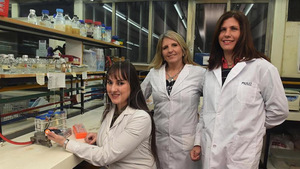 El mundo celebra el Día de la Niña y la Mujer en la Ciencia