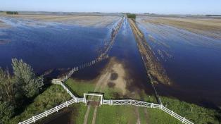 Pérdidas millonarias por inundaciones, sequía e incendios en el campo