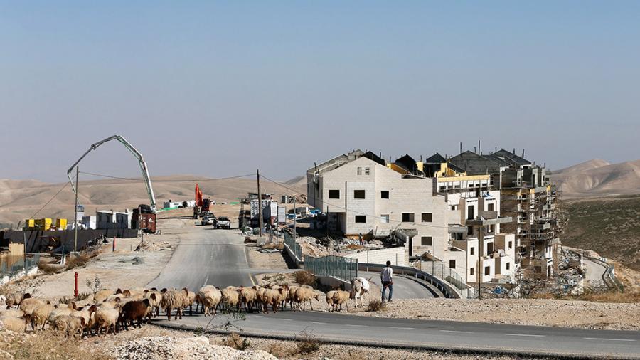 Planean construir una nueva colonia en el centro antiguo de Hebrón