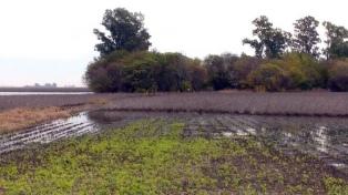 Declaran la emergencia productiva para fruticultores de cinco provincias