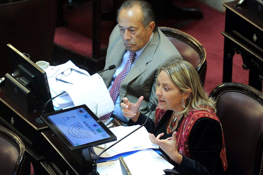 "La diputada Negre de Alonso, solicitó que ""cese el estado de incertidumbre en el ámbito provincial""."