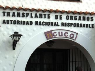 El 84% de los trasplantes de córneas en la Argentina se hacen con tejidos de donantes fallecidos en el país.
