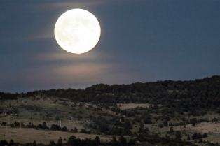 """Una """"Súper Luna"""" se podrá observar este domingo en el cielo argentino"""