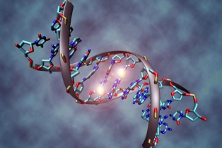 Estudian 2.700 tumores para encontrar nuevas terapias contra el cáncer