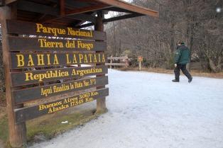 Condenaron a los tres imputados por la tala de árboles en el Parque Nacional Tierra del Fuego