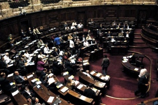Un diputado electo propuso revisar el aborto y el matrimonio igualitario