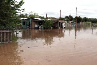 Más de 700 evacuados y 600.000 hectáreas afectadas por las inundaciones