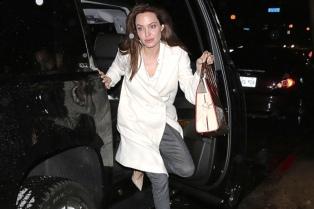 La actriz Angelina Jolie se extirpó los ovarios para prevenir un cáncer