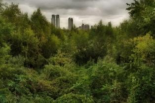 Cierran este martes la Reserva Ecológica para realizar un peritaje por los últimos incendios