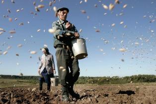 Asignan pagos a trabajadores temporarios de actividades agrarias y agroindustriales