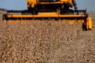 Vislumbran interés de fondos estadounidenses por invertir en agronegocios