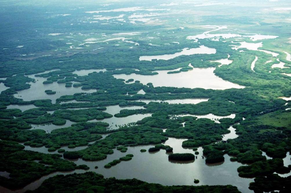 Islas y humedales del río Paraná