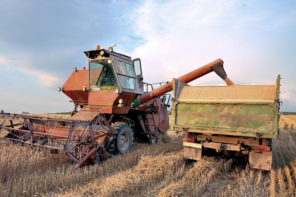 La liquidación de divisas está fundamentalmente relacionada con la compra de granos que luego serán exportados.