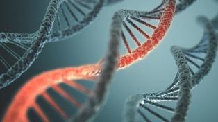 El registro de huellas genéticas incorpora tecnología del FBI para resolver crímenes