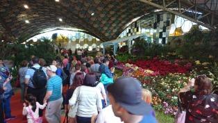 Finaliza la Fiesta de la Flor en Escobar, que recibió más de 60 mil visitantes