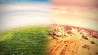 """Ambientalistas piden cambios para la """"nueva normalidad"""" que permitan enfrentar la crisis climática"""