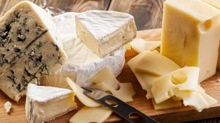 Desarrollan etiquetas proteicas para poder diferenciar lotes de quesos