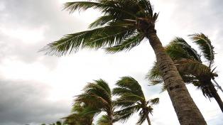 El huracán Irma es furor en las redes