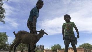 """""""Sociedad que no cuida niños y grupos vulnerables corre riesgo de implosión y muerte"""""""