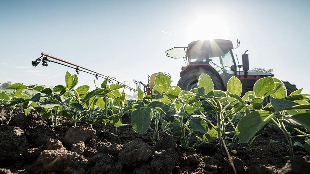 """La rentabilidad de los agricultores se ubica entre """"las más altas de la historia"""""""