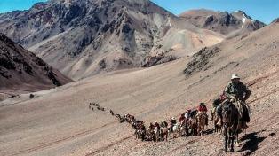 Culmina el Cruce de los Andes, recreado por militares argentinos y chilenos