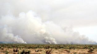 """Estiman que para esta tarde el incendio en Punta Lara estará """"controlado"""""""