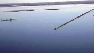 Crece la laguna La Picasa y ya hay más de medio metro agua sobre sectores de la Ruta 7