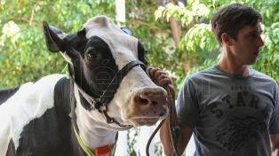 """Chatear con vacas gracias a la inteligencia artificial, el presente del """"Agro 4.0"""""""