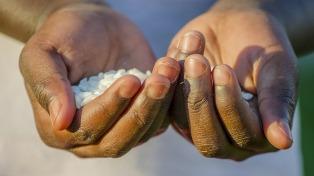 Más de 500 parlamentarios de Latinoamérica advierten sobre el hambre durante la pandemia