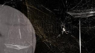 Las arañas y sus telas son las protagonistas exclusivas de la muestra de Tomás Saraceno